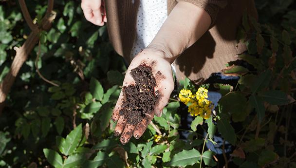 DM Compost… et ses caisses-palettes